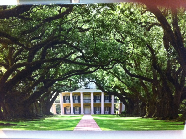 Mansion Through The Living Oaks.